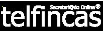 logo-texto-Telfincas-vectorizado-blanco